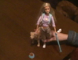 Poop Scoopin' Barbie (video)